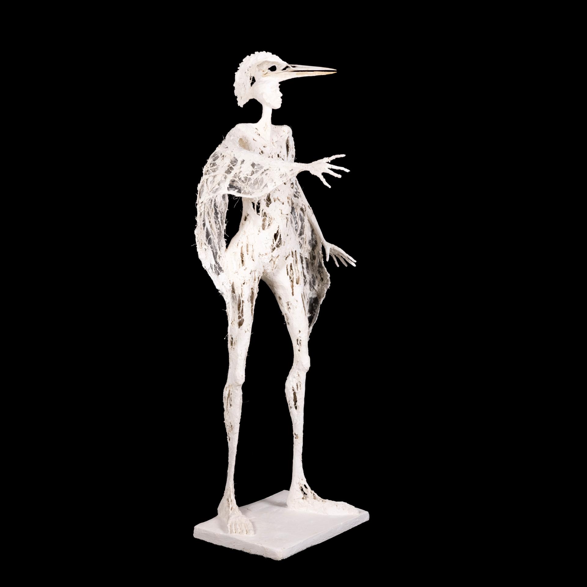L'Oiseau-Roi couronné